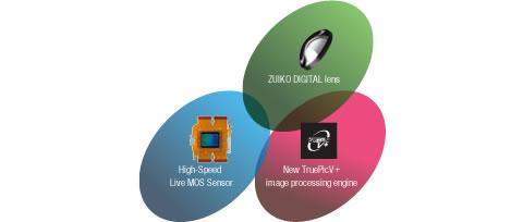 鏡頭、感光元件及影像處理器,三者共同合作得到超卓的畫質表現。
